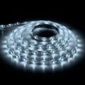 Лента светодиодная + драйвер  Feron LS603 (27696)
